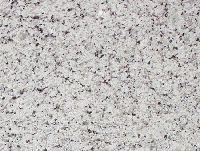 Вайт Орнаментале гранит плита (300х600х20 мм)